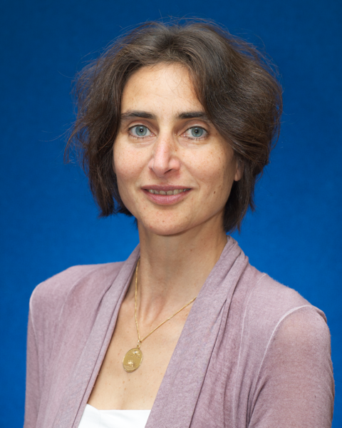 Dr Adina Lew